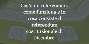 Cos'è un referendum, come funziona e in cosa consiste il referendum costituzionale di Dicembre.