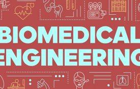 sbocchi lavorativi laurea in ingegneria biomedica